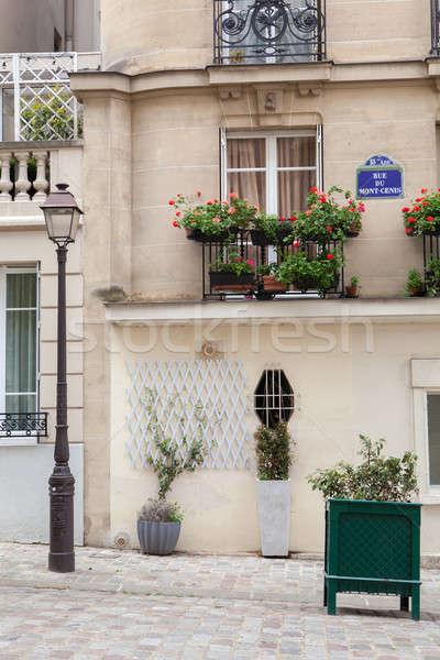 Street light in Paris, France Stock photo © artjazz