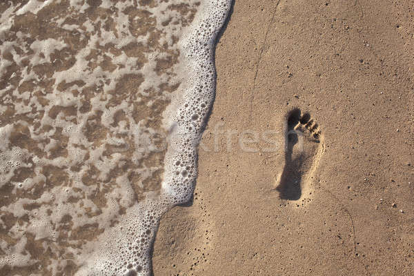 sand with footprint and water wave Stock photo © artjazz