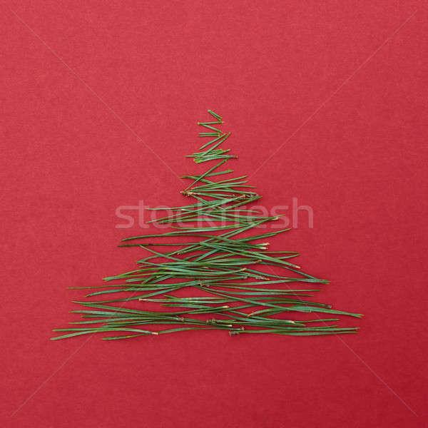 ストックフォト: 針 · 松 · 木 · フォーム · ツリー · クリスマスツリー