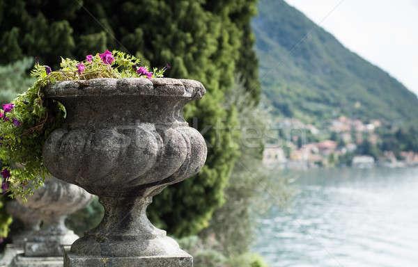 Kő virágváza közelkép tó terv kert Stock fotó © Artlover