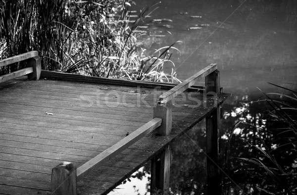 Fishing time! Stock photo © Artlover