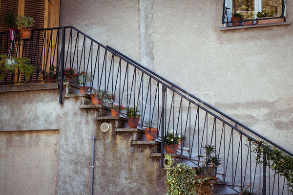 Potted Plants on the stairs Stock photo © Artlover