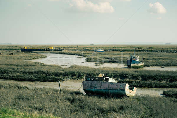 Low Tide Stock photo © Artlover