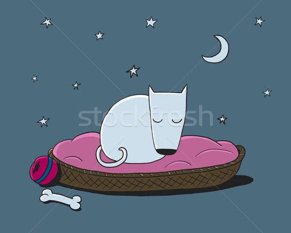 белый собака спальный корзины ночь спать Сток-фото © Artlover