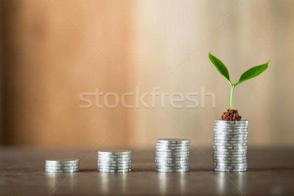 Vier geld hout natuurlijk licht financieren Stockfoto © artrachen