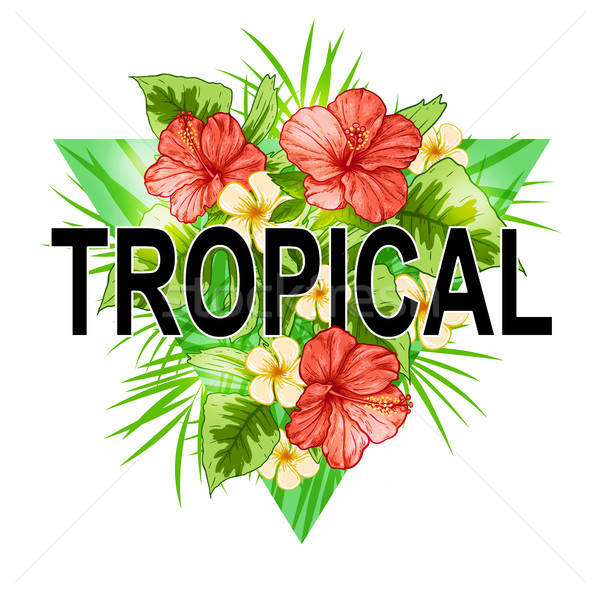 Abstract triangle tropical background Stock photo © Artspace