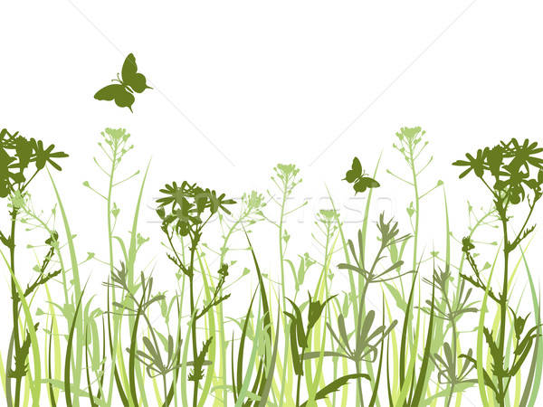 Green background with flowers and butterflies Stock photo © Artspace