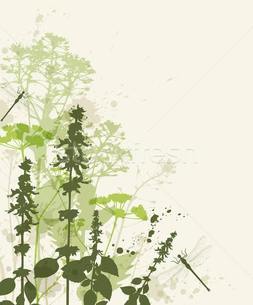 花 トンボ フローラル ベクトル 緑 デザイン ストックフォト © Artspace