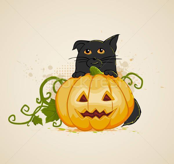 Kedi kabak halloween vektör doğa sonbahar Stok fotoğraf © Artspace
