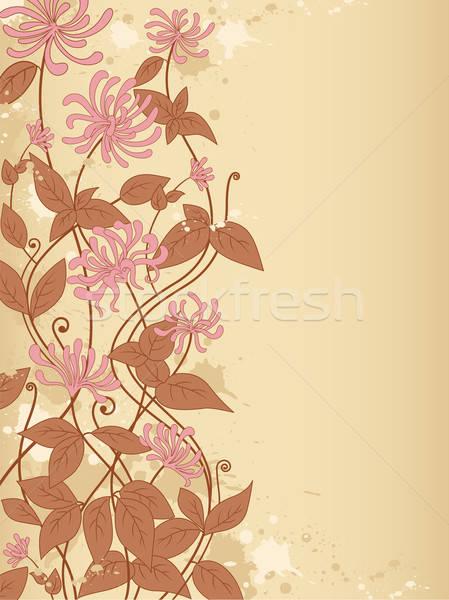 Foto stock: Flores · decorativo · vector · diseno · verano · retro
