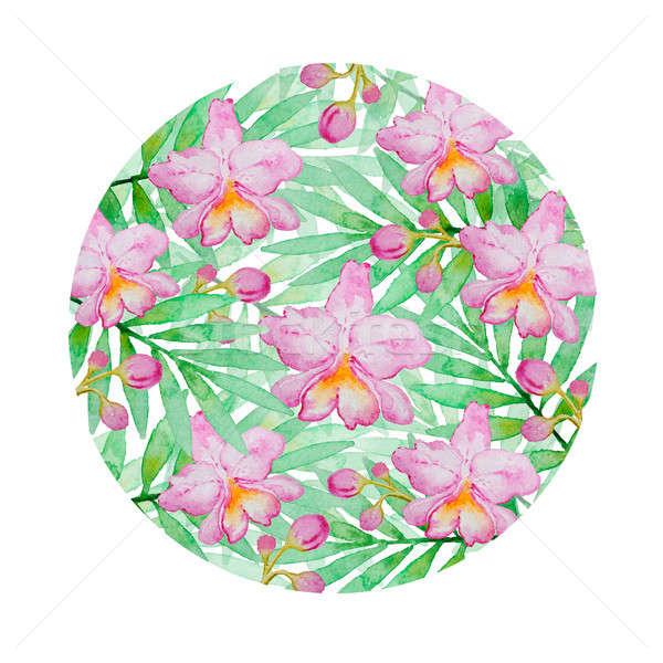 Foto stock: Floral · rosa · aquarela · orquídeas · verde · palma