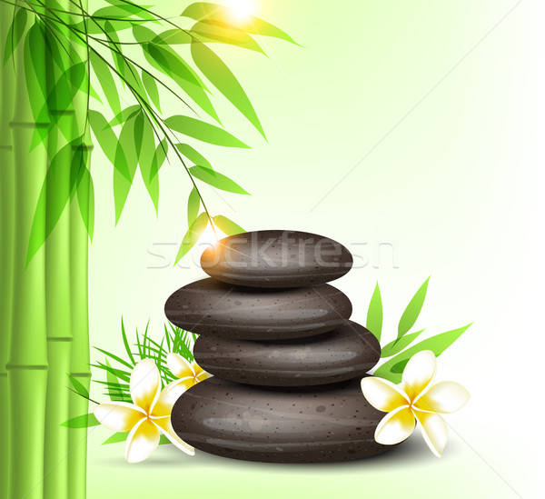 Spa stones and green bamboo Stock photo © Artspace