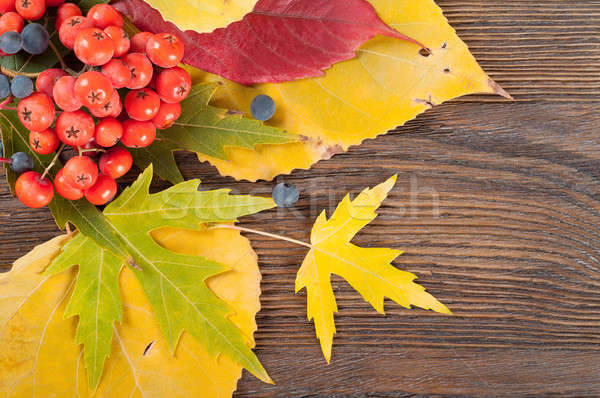 Leaves on a wooden background. Stock photo © Artspace
