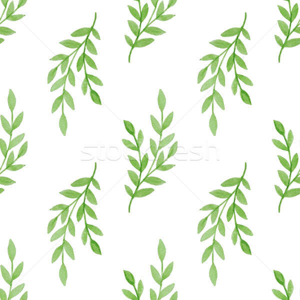 Model yeşil şube yaz suluboya Stok fotoğraf © Artspace