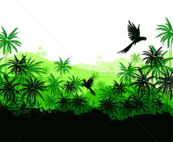 Zöld pálmafák papagájok trópusi tájkép terv Stock fotó © Artspace