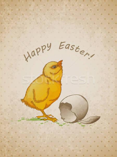 Húsvét háttér tyúk vektor kéz klasszikus Stock fotó © Artspace