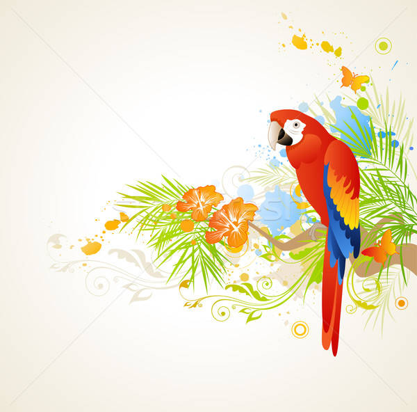 summer background with ornament and parrot Stock photo © Artspace