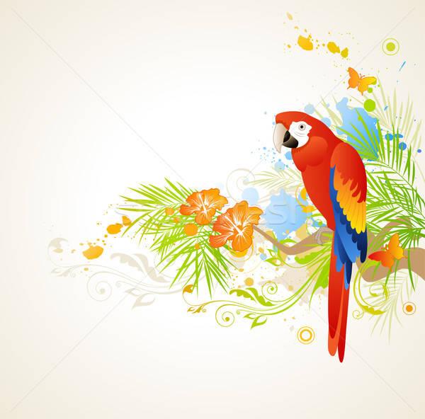 ストックフォト: 夏 · 飾り · オウム · ベクトル · 草 · 自然