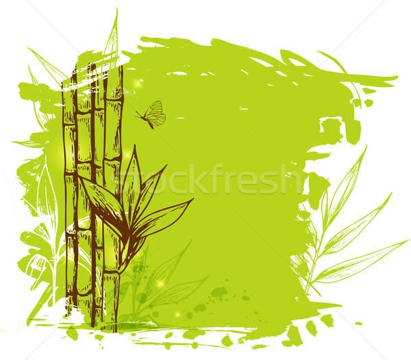 Verde bambu decorativo ramo árvore Foto stock © Artspace