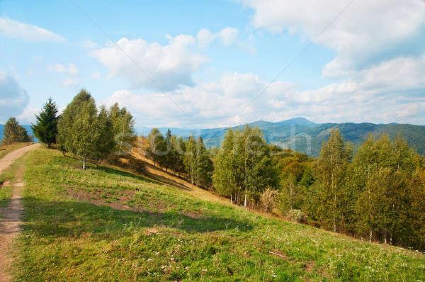 Stock photo: Autumn Carpathian landscape
