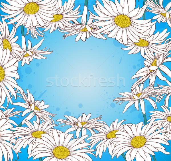 Camomila azul decorativo vetor fundo margarida Foto stock © Artspace