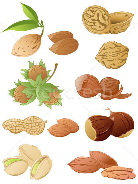 set of various nuts Stock photo © Artspace