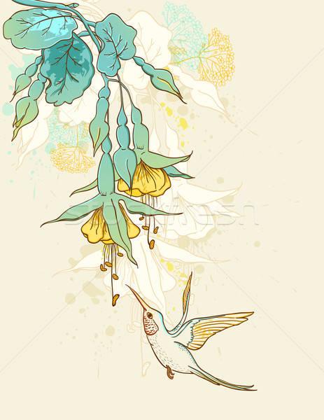 Flowers and humming-bird Stock photo © Artspace