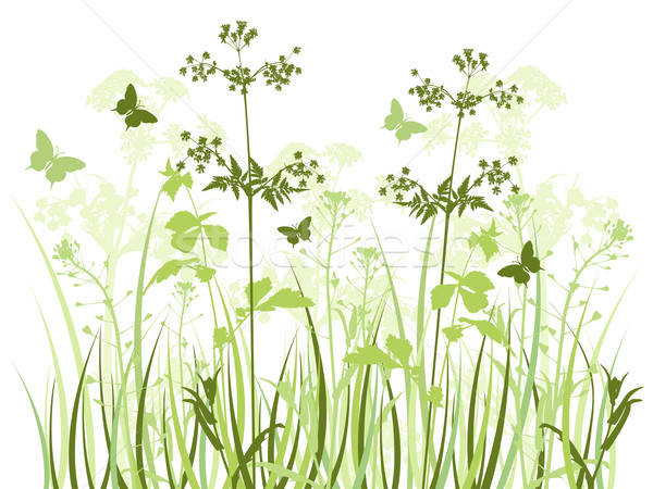 Pradera flores silvestres verde vector mariposas primavera Foto stock © Artspace