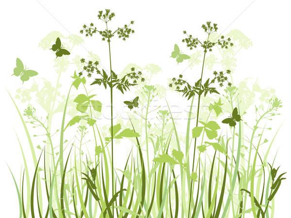 Prado flores silvestres verde vetor borboletas primavera Foto stock © Artspace