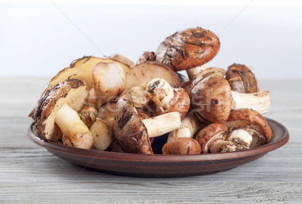 Mushrooms in a clay plate. Stock photo © Artspace