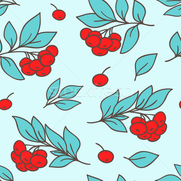 Seamless pattern with red rowanberry Stock photo © Artspace
