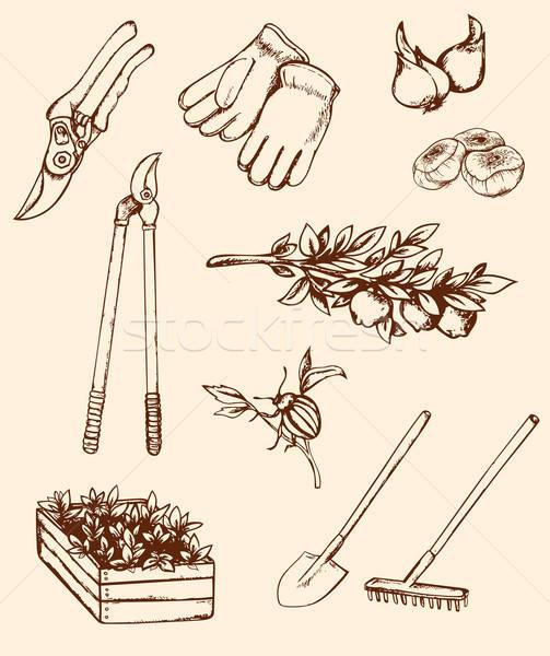 Hand drawn garden tools Stock photo © Artspace