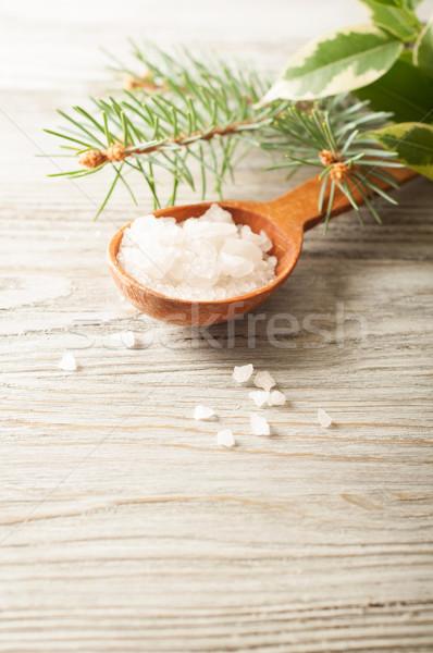 Sal cuchara de madera aromático pino rama Foto stock © Artspace