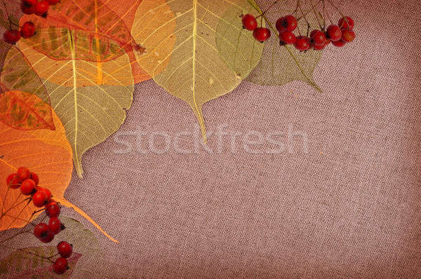 Autumn background  Stock photo © Artspace