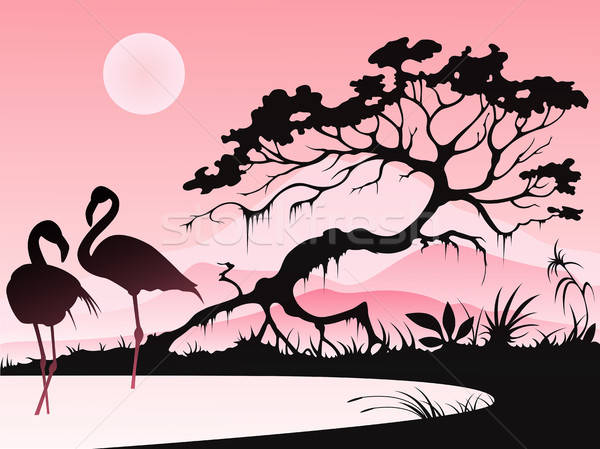 Landscape with two flamingos Stock photo © Artspace