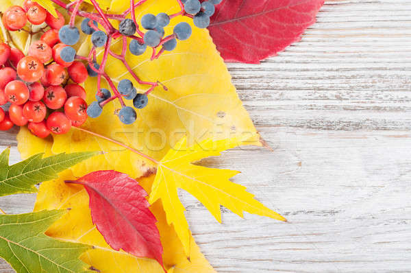 Falling leaves on a wooden background Stock photo © Artspace