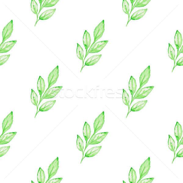 Patrón verde rama verano floral acuarela Foto stock © Artspace