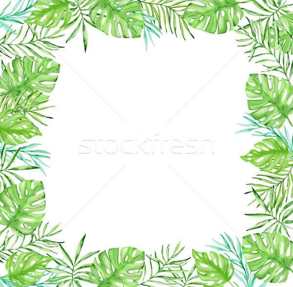 Tropicales floral cadre vert feuilles de palmier couleur pour aquarelle Photo stock © Artspace