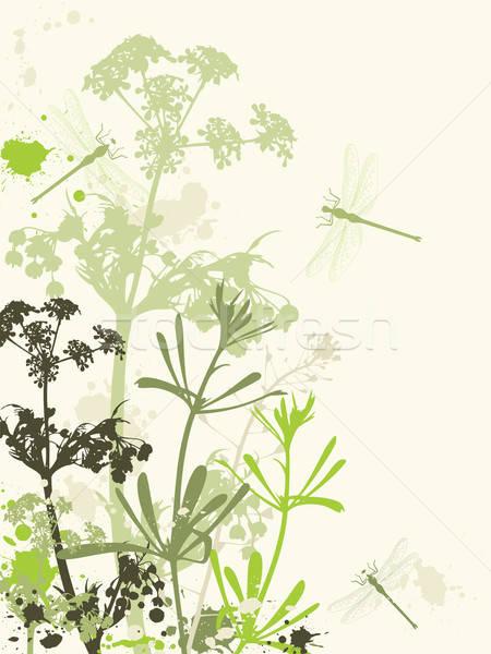 Stock fotó: Grunge · virágok · zöld · hatás · tavasz · fű