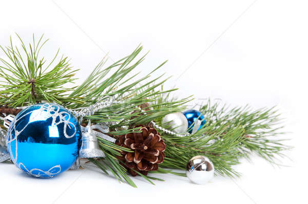 blue ball and pine branch Stock photo © Artspace