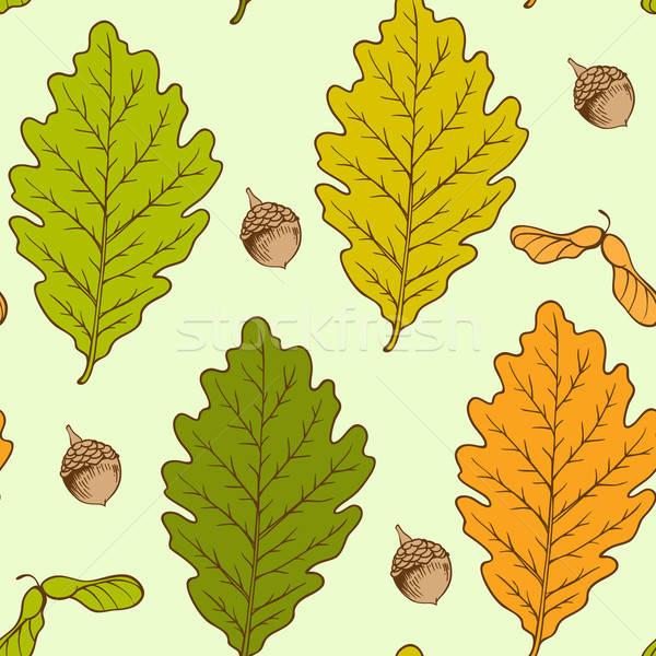дуб листьев вектора осень оранжевый Сток-фото © Artspace