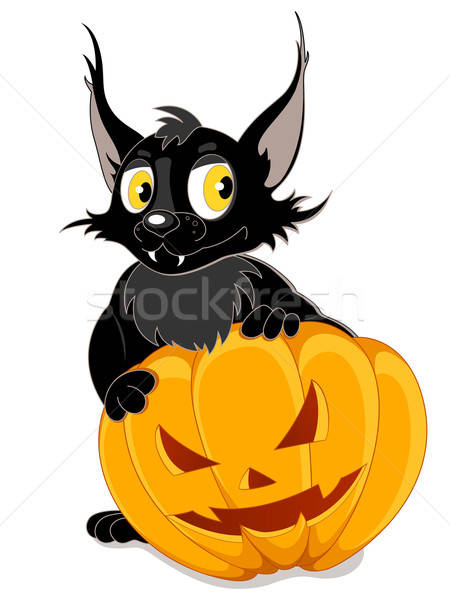 Black bat and Halloween pumpkin Stock photo © Artspace