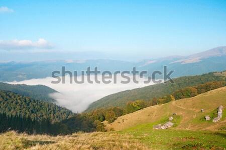 Foggy mountain landscape Stock photo © Artspace