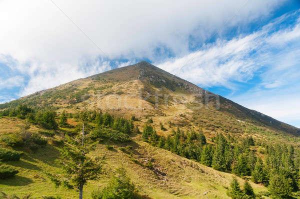 Carpathian autumn mountains landscape Stock photo © Artspace
