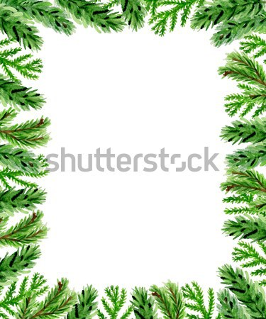 Noël floral sapin branche dessinés à la main couleur pour aquarelle Photo stock © Artspace