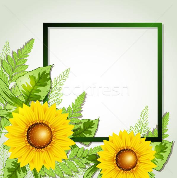 ストックフォト: フローラル · フレーム · ひまわり · 夏 · 緑の葉 · カード