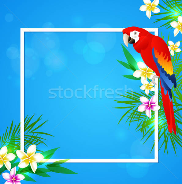 Tropical frame with parrot Stock photo © Artspace