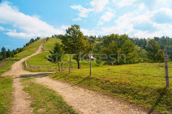 Mountain road in the Carpathians Stock photo © Artspace