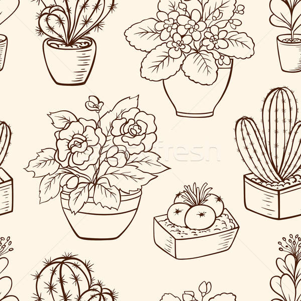 Pattern with houseplants Stock photo © Artspace