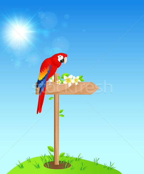 Background with red parrot Stock photo © Artspace